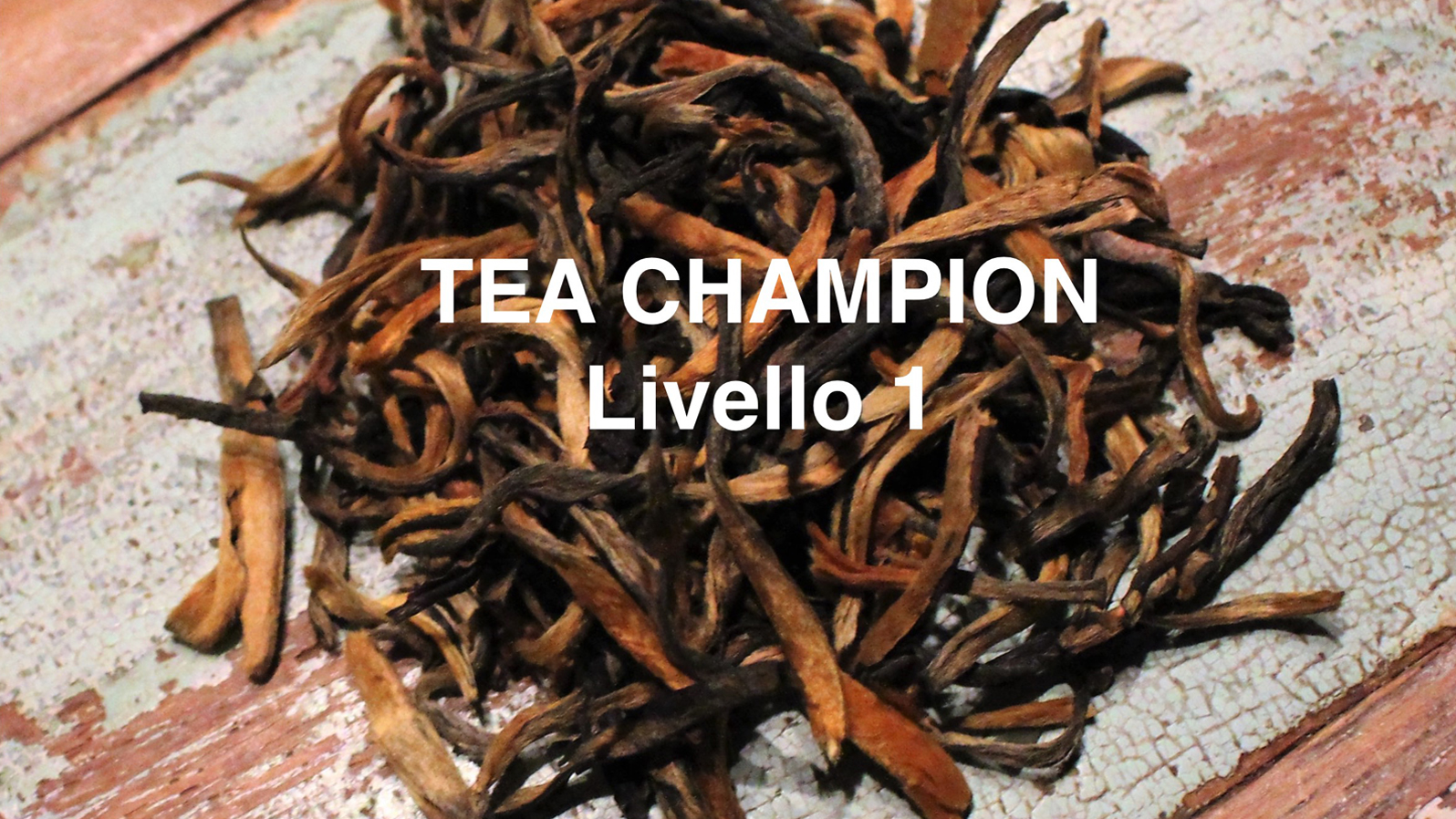 tea chmapion level 1 sec