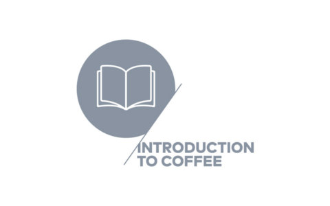 introduction-coffee